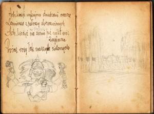 strona11