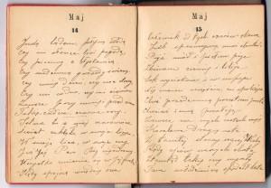 notatnik31